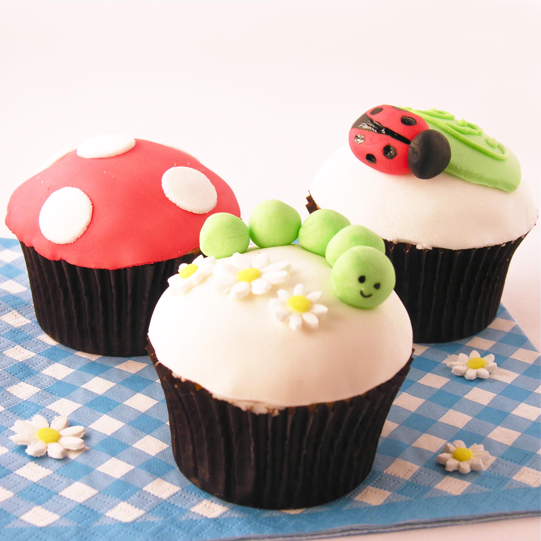 Fondant Cupcake Decorating Class